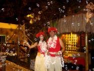 Recepção de Havaianos